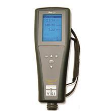 美国维赛YSI Pro20溶解氧测量仪